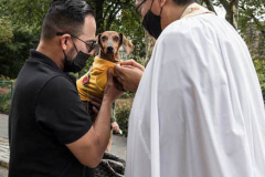 A man and his Dauschund at The blessing of animals at Cathedral Church of St. John The Divine. The Blessing Of The Animals is connected with World Animal Day , which is also the Catholic day of remembrance for Saint Francis of Assisi. The founder of the Franciscan Order is considered the patron saint of animals