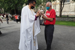 The blessing of animals at Cathedral Church of St. John The Divine. The Blessing Of The Animals is connected with World Animal Day , which is also the Catholic day of remembrance for Saint Francis of Assisi. The founder of the Franciscan Order is considered the patron saint of animals