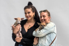 Two women pose with their  Chihuahua's at The blessing of animals at Cathedral Church of St. John The Divine. The Blessing Of The Animals is connected with World Animal Day , which is also the Catholic day of remembrance for Saint Francis of Assisi. The founder of the Franciscan Order is considered the patron saint of animals