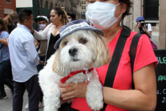 New York,   Blessing of the Animals at St. Francis of Assisi Church in Manhattan.  St. Francis of Assisi is the patron saint of animals and it's part of the Franciscan tradition to bless  furry friends on or near Francis' feast day.