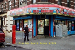 "Two men shot — one of them seven times — outside Bronx bodega  A trigger-happy gunman unleashed a barrage of bullets at two men standing outside a Bronx bodega Tuesday, hitting one of them seven times and the other twice.  Both victims had by Tuesday night survived the alarming hail of bullets, cops said.  The men, 21 and 37, were standing outside the Los Primos Deli Grocery at W. 165th St. and Woodycrest Ave. in Highbridge when the assailant emerged from between a parked van and SUV and started shooting.   ""There were shots. He was screaming and laying on the floor face-up, bleeding,"" witness Freddy Perdomo, 55, said of the younger victim, who was hit seven times. ""I could see two of his stomach wounds. The (shooter) had a gun in his hand, and he was running down the street.... He was holding a big black gun.""   Medics took both men to Lincoln Hospital. The shooter is described as a Black man in a white t-shirt, with a scruffy beard and a bag stretched across his torso.  Cops have not yet made an arrest in the shooting."