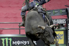 Jose Vitor Leme rides a bull named Home Wrecker while competing in the PBR's (Professional Bull Riders) Elite Unleash The Beast event at the Prudential Center in Newark NJ on September 19, 2021. (Photo by Andrew Schwartz)