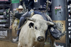 Claudio Montanha Jr. rides a bull named Tapp Out while competing in the PBR's (Professional Bull Riders) Elite Unleash The Beast event at the Prudential Center in Newark NJ on September 19, 2021. (Photo by Andrew Schwartz)
