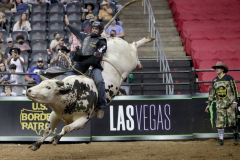 A bull rider competes in the PBR's (Professional Bull Riders) Elite Unleash The Beast event at the Prudential Center in Newark NJ on September 19, 2021. (Photo by Andrew Schwartz)