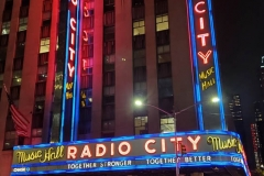 Radio City Music Hall and the Disney Store are boarded up in anticipation of protests in New York City due to the presidential election.