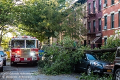 FDNY firefighters of Engine 239/Ladder 122 arrive to clear fallen trees on 7th Street in the Park Slope neighborhood of Brooklyn after tropical storm Isaias hit  New York City on August 4, 2020. (Photo by Gabriele Holtermann/Sipa USA)