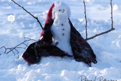 A tiny snowman in the park
