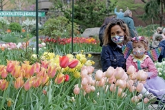 3-year-old Violet and her mother attend the West Side Community Garden's 2021 Tulip Festival on West 89th Street in Manhattan NY on April 18, 2021. The annual festival features close to 100 varieties of tulips of all shapes and sizes in full bloom inside the garden on the upper west side of Manhattan. (Photo by Andrew Schwartz)