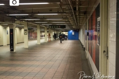 The Times Square Subway station during Rush Hour on Christmas Eve is usually packed with people but tonight it is almost empty due to the Corona Virus and people staying home.